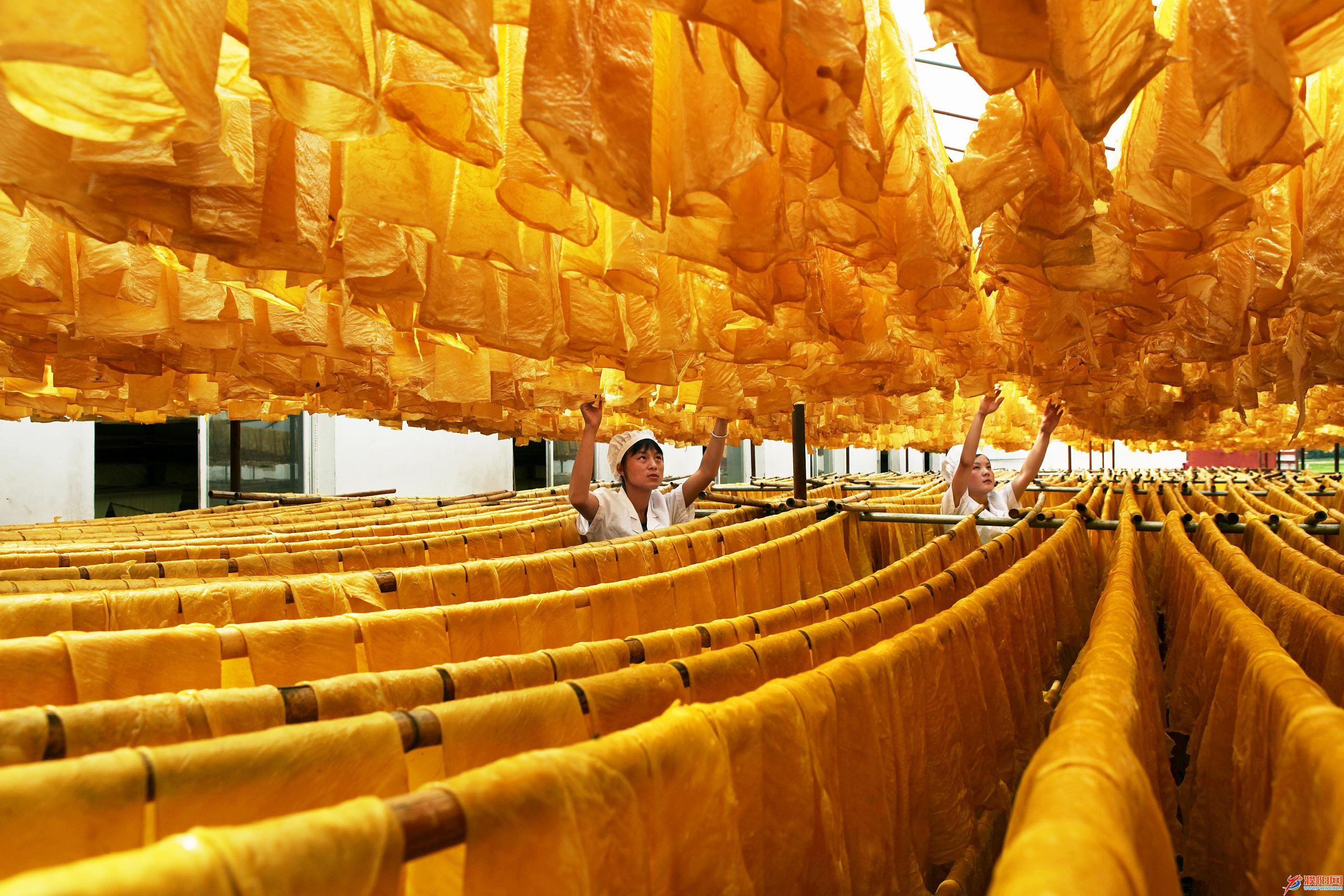 石屏豆腐皮产业。(金家茂 摄)13808772466—红河州税务局—'多彩农业•美丽家园'摄影大赛.JPG