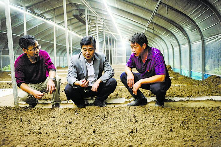 清丰县:电商助力群众脱贫致富