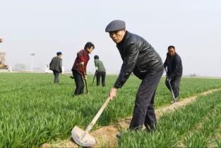 李连成:领袖嘱托带回村 西辛庄里追梦人