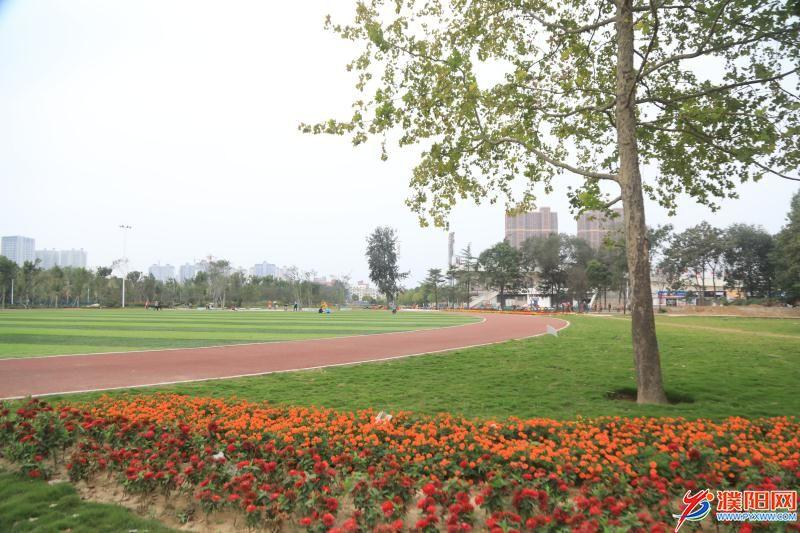 市马颊河体育公园二期开放投用