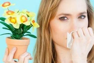感冒还是鼻炎?秋季过敏性鼻炎高发