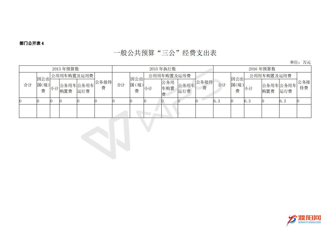 2016濮阳日报社预算公开文件_12.jpg
